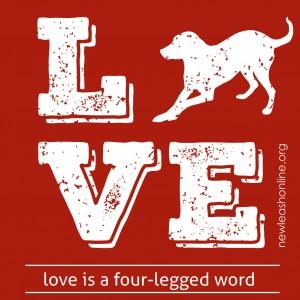 NLOL_Tshirt_2016_Valentines_Campaign